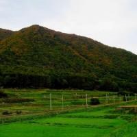 仁科三湖紅葉ロード