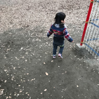 【2歳】蘆花公園(ろかこうえん)