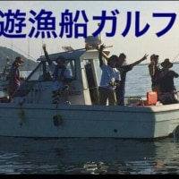 志賀島産のサザエ