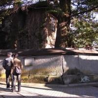 金沢diary,180日 ( 114 )