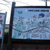 TK37土佐入野(高知県)とさいりの