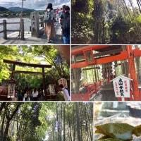 京都 嵐山へ