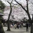 靖国神社 平成29年4月6日