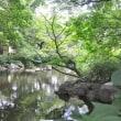 涼風・感じる公園・・こさのぼ散歩