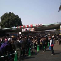 上野動物園!!