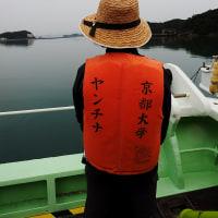 京大ウィークス・白浜と道成寺(1)