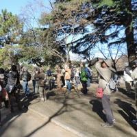 ビギナーズ探鳥会 千葉公園