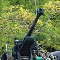 福知山記念行事2016 模擬戦闘 2