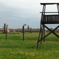 ポーランド(その5:アウシュヴィッツ、シンドラー工場、蜂起記念館)