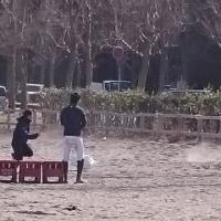 2017年  筑波大戦(競技結果)