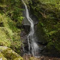 布滝付近の無名滝