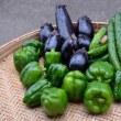 暑くなったら、野菜の収穫で忙しい・・・