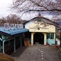 上田電鉄別所線~17年4月北信越さくら旅行記その3