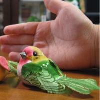 小鳥のお土産とダムのこと