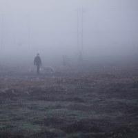 霧の中歩めば