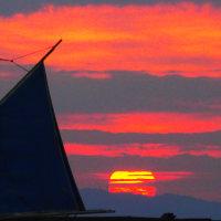 『日の出』 帆