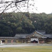 坂の上から福岡県護国神社へ