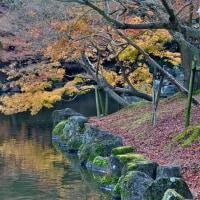奈良公園 浮見堂