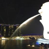 ストレスと痛みとシンガポール