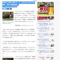 【TNR失敗】流入猫が発生しない離島でも地域猫は野生化し環境破壊!TNRの提唱者責任とれよ!
