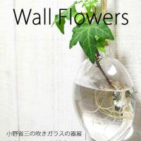 Wall Flowers ����ʻ��ο���饹�δ�Ÿ��5/16-5/29