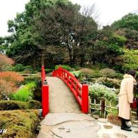 ホテルニューオータニの「日本庭園」 都心の喧騒を忘れて!!