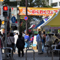 Waku Waku ( Exciting ) fair in my town