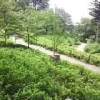 俣野別邸庭園散策