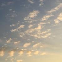 今日の空と先日の報告