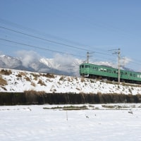 地方色の113・117系電車