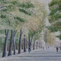 189 北京の並木道