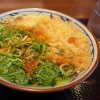 生姜ココアが流行るときの生姜うどん 丸亀製麺