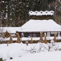 積雪の「かやぶきの里」  京都府南丹市美山町北
