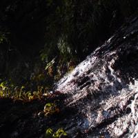 秋の遠足  養老渓谷。