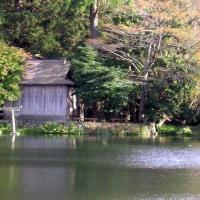 国東半島 仏山寺 2012.11.12    Archives