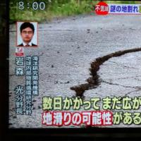 やっぱ地震に結びつけてしまう。メガマウスザメがまた見つかって、大分の地割れもすごく気になる。
