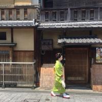 京都・初夏の心象風景 〜 花見小路を歩く舞妓はん