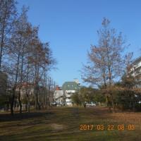 天気もよく温かい日でした