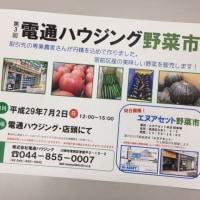 7月2日(日)は野菜市!