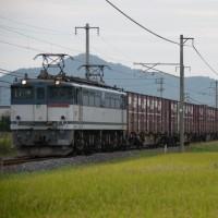 Electric Locomotive#202