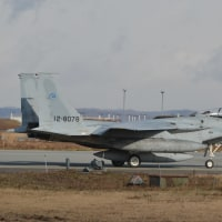 飛実団 F-15