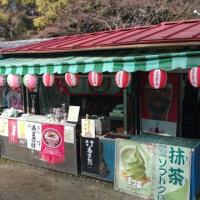 お正月 京都へ旅行