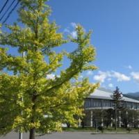 10月19日(水)熟年体育大学;体力測定日
