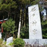 ドライブ「道の駅フェニックス→鵜戸神宮→青島神社」@宮崎&日南