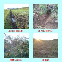 排水口整備