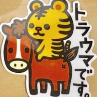 お子さんへのソマティックエクスペリエンス®〜すごい!!!