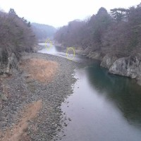解禁日の鬼怒川(小佐越、高徳地区)