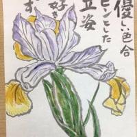 4月、絵手紙 自由課題