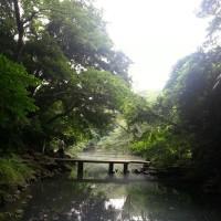 東京周遊記13 東大内の三四郎池