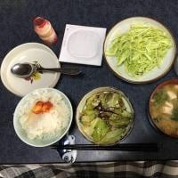 六日目の朝昼晩飯